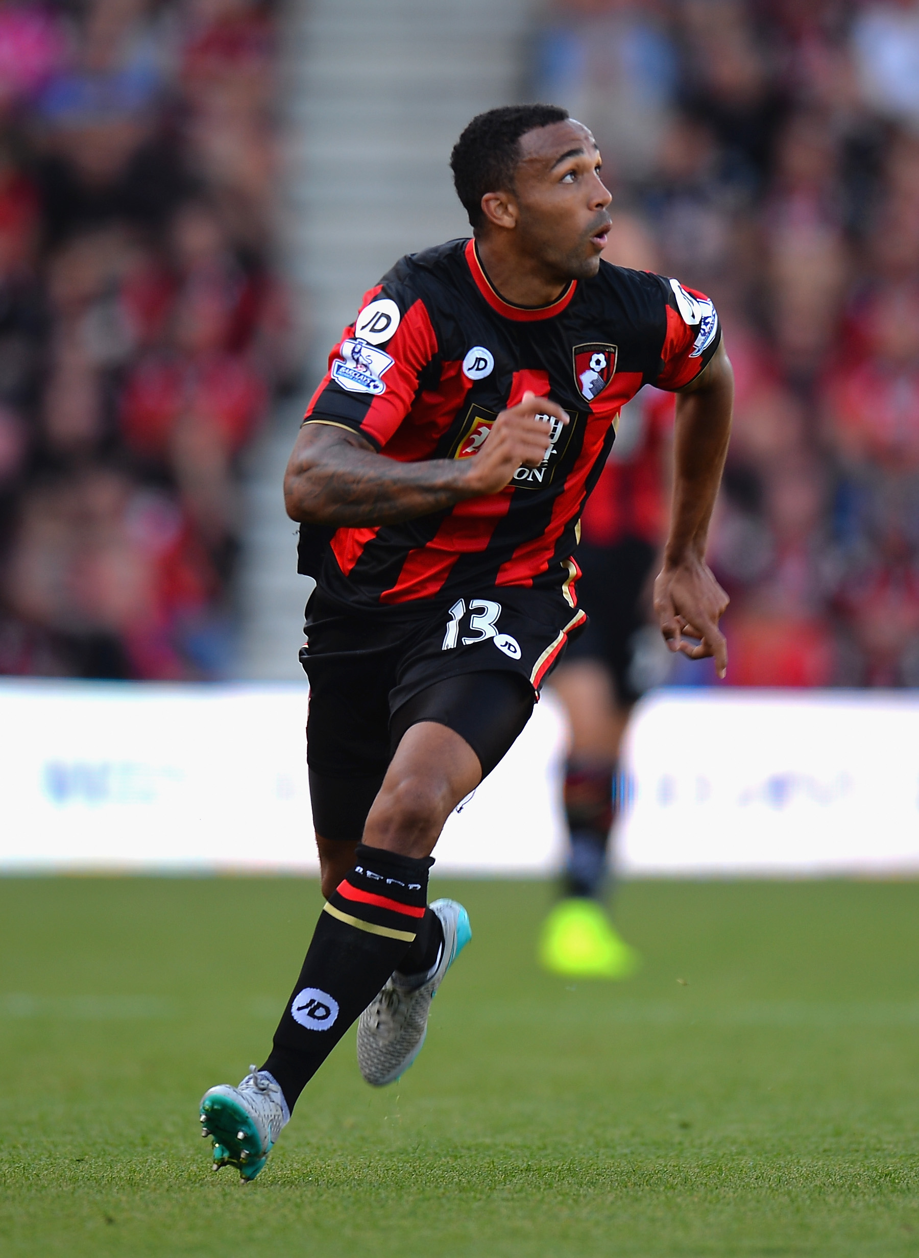 callum wilson injury