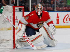 SUNRISE, FL - NOVEMBER 26: Goaltender Roberto Luongo #1 of the Florida Panthers defends the net against the Columbus Blue Jackets during second period action at the BB&T Center on November 26, 2016 in Sunrise, Florida. (Photo by Joel Auerbach/Getty Images)
