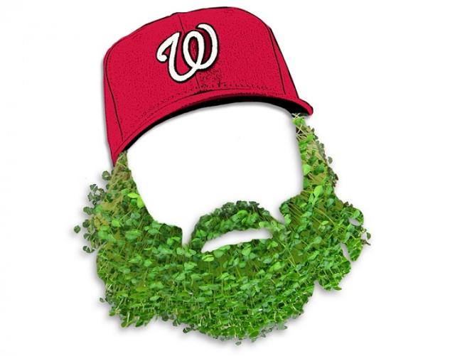 The nationals are giving away a jayson werth chia pet