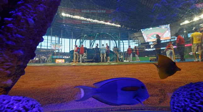 MIAMI, FL - APRIL 04:  A general view of Marlin's Park through the fishtank behind home plate during Opening Day between the Miami Marlins and the St. Louis Cardinals at Marlins Park on April 4, 2012 in Miami, Florida.  (Photo by Mike Ehrmann/Getty Images)