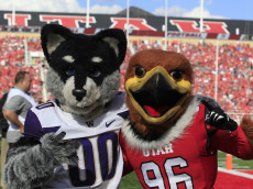 "SALT LAKE CITY, UT - OCTOBER 29: This is a picture of the Utah Mascot, ""Swoop"", right, and the Washington Huskies mascot ""Harry the Husky"", left, at an NCAA football game at Rice-Eccles Stadium on October 29, 2016 in Salt Lake City, Utah. (Photo by George Frey/Getty Images)"