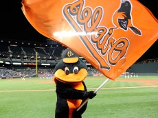 BALTIMORE, MD - SEPTEMBER 13:  The Baltimore Orioles mascot celebrates after an 8-2 victory against the Kansas City Royals at Oriole Park at Camden Yards on September 13, 2015 in Baltimore, Maryland.  (Photo by Greg Fiume/Getty Images)