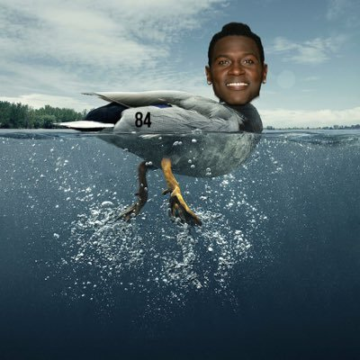 Antonio Brown twitter avatar