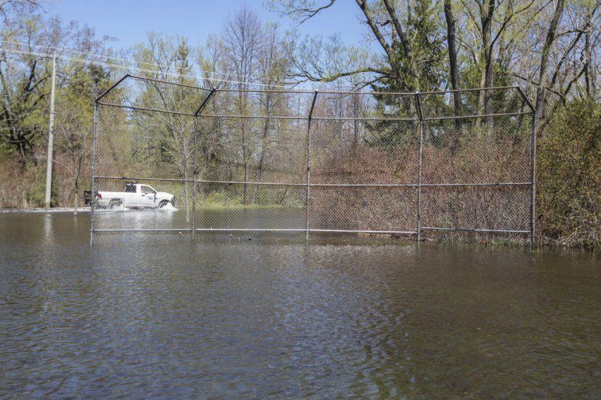Flooded Toronto baseball diamond overtaken by spawning ...