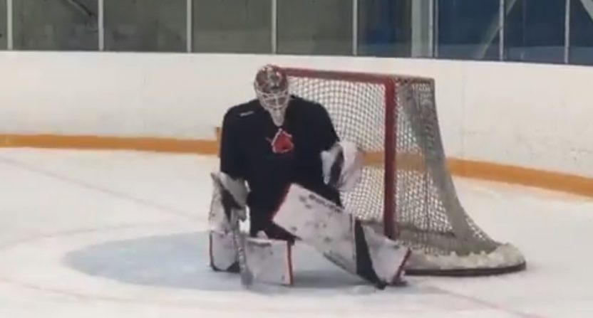 New Chest Pad Regulations For Nhl Goaltenders Are Already Surrounded