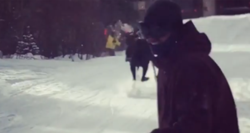 A moose charging snowboarders and skiers in Colorado.