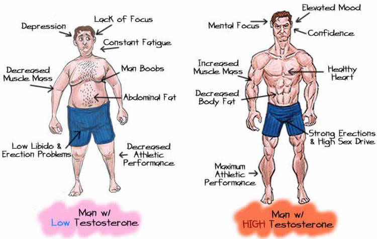 Does testosterone booster make you gain weight